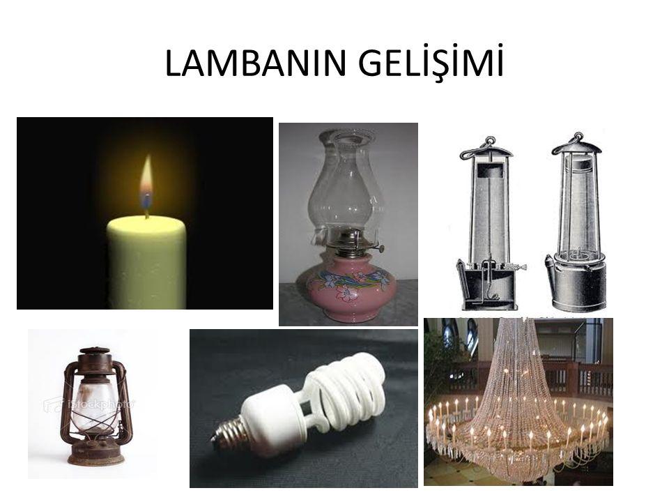 LAMBANIN GELİŞİMİ