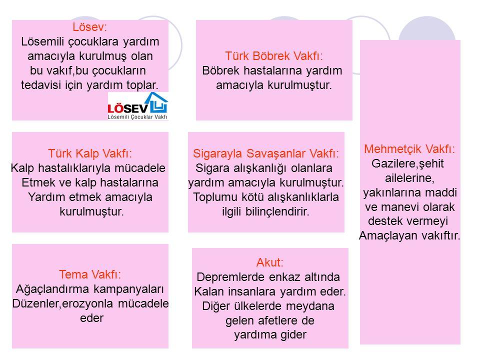 Lösev: Lösemili çocuklara yardım amacıyla kurulmuş olan bu vakıf,bu çocukların tedavisi için yardım toplar. Türk Böbrek Vakfı: Böbrek hastalarına yard