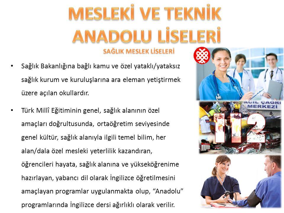 Sağlık Bakanlığına bağlı kamu ve özel yataklı/yataksız sağlık kurum ve kuruluşlarına ara eleman yetiştirmek üzere açılan okullardır. Türk Millî Eğitim