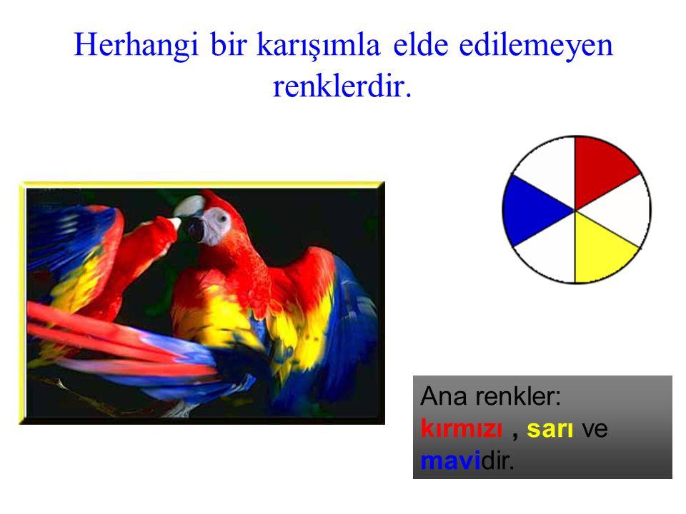 Herhangi bir karışımla elde edilemeyen renklerdir. Ana renkler: kırmızı, sarı ve mavidir.