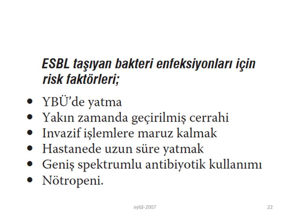 eylül-200722