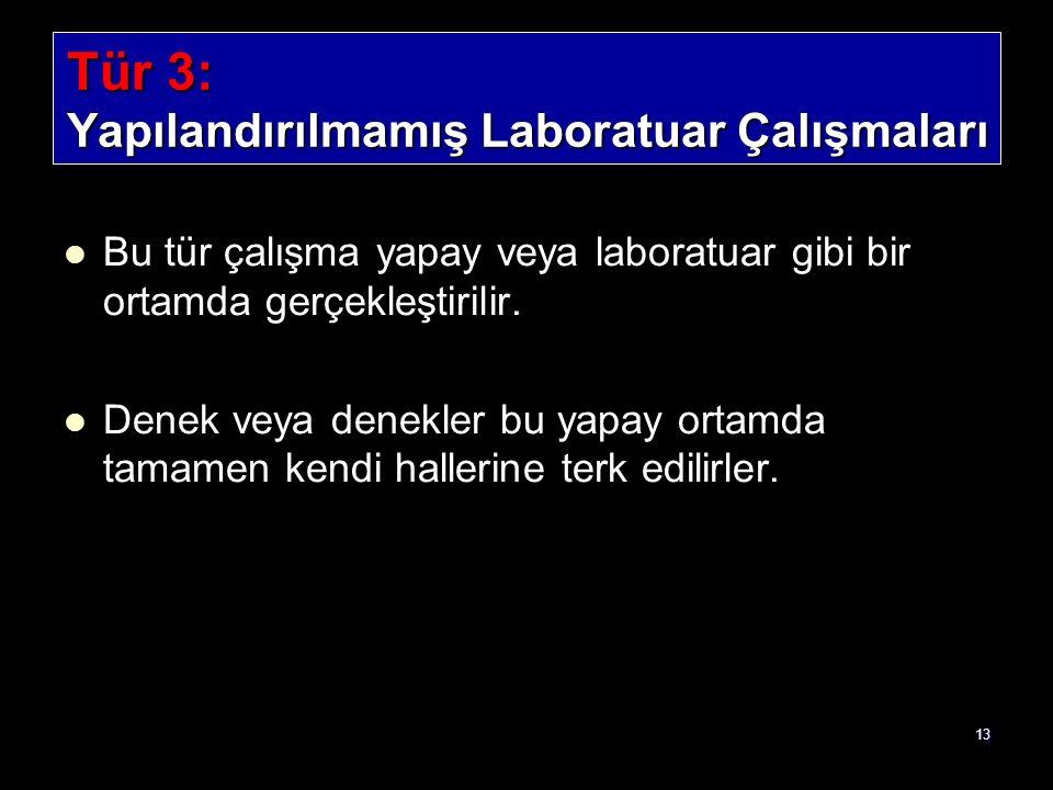 13 Tür 3: Yapılandırılmamış Laboratuar Çalışmaları Bu tür çalışma yapay veya laboratuar gibi bir ortamda gerçekleştirilir. Denek veya denekler bu yapa