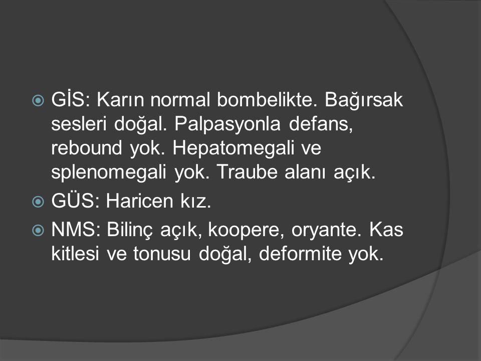  GİS: Karın normal bombelikte. Bağırsak sesleri doğal.