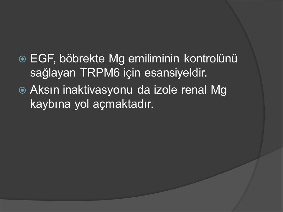  EGF, böbrekte Mg emiliminin kontrolünü sağlayan TRPM6 için esansiyeldir.