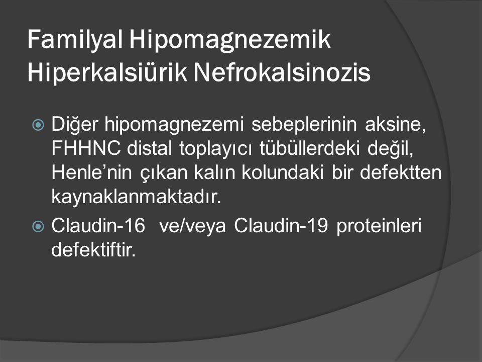 Familyal Hipomagnezemik Hiperkalsiürik Nefrokalsinozis  Diğer hipomagnezemi sebeplerinin aksine, FHHNC distal toplayıcı tübüllerdeki değil, Henle'nin çıkan kalın kolundaki bir defektten kaynaklanmaktadır.