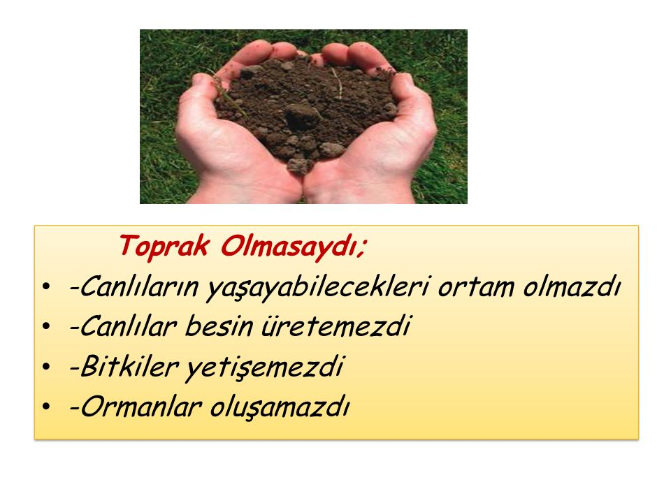 Toprak Olmasaydı; -Canlıların yaşayabilecekleri ortam olmazdı -Canlılar besin üretemezdi -Bitkiler yetişemezdi -Ormanlar oluşamazdı Toprak Olmasaydı;
