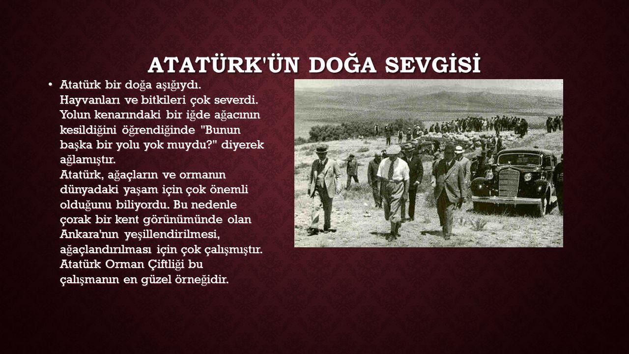 ATATÜRK ÜN DOĞA SEVGİSİ Atatürk bir do ğ a a ş ı ğ ıydı.