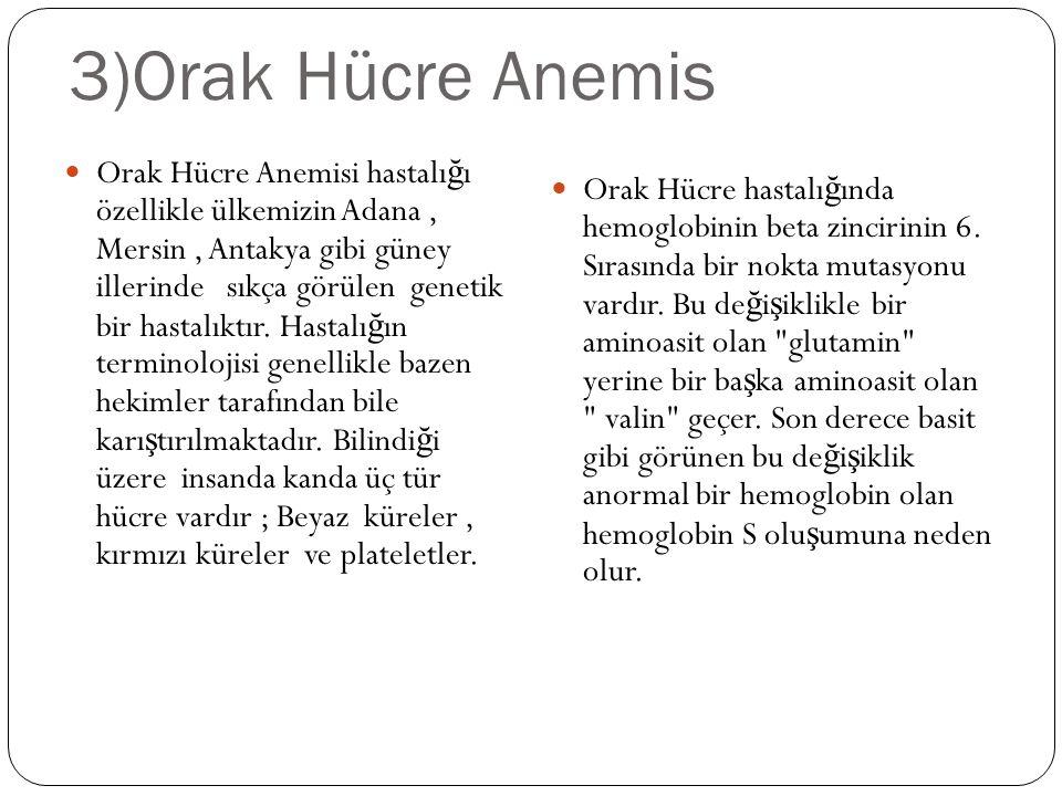 3)Orak Hücre Anemis Orak Hücre Anemisi hastalı ğ ı özellikle ülkemizin Adana, Mersin, Antakya gibi güney illerinde sıkça görülen genetik bir hastalıktır.