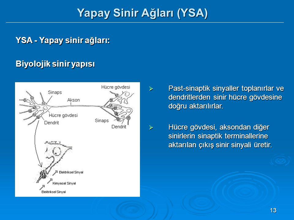 13 YSA - Yapay sinir ağları: Biyolojik sinir yapısı  Past-sinaptik sinyaller toplanırlar ve dendritlerden sinir hücre gövdesine doğru aktarılırlar.