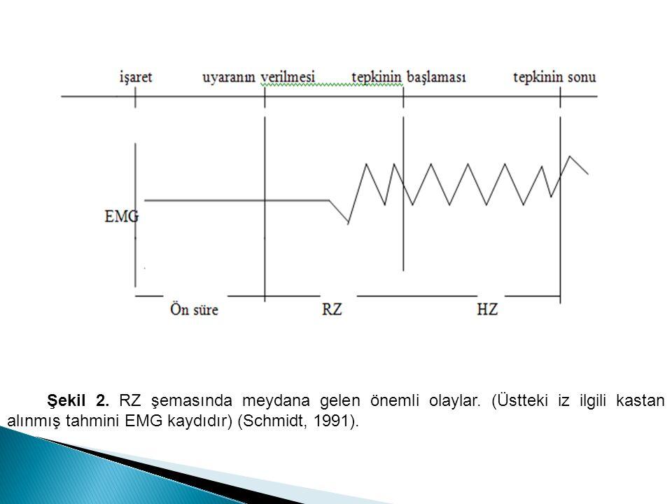 Şekil 2.RZ şemasında meydana gelen önemli olaylar.