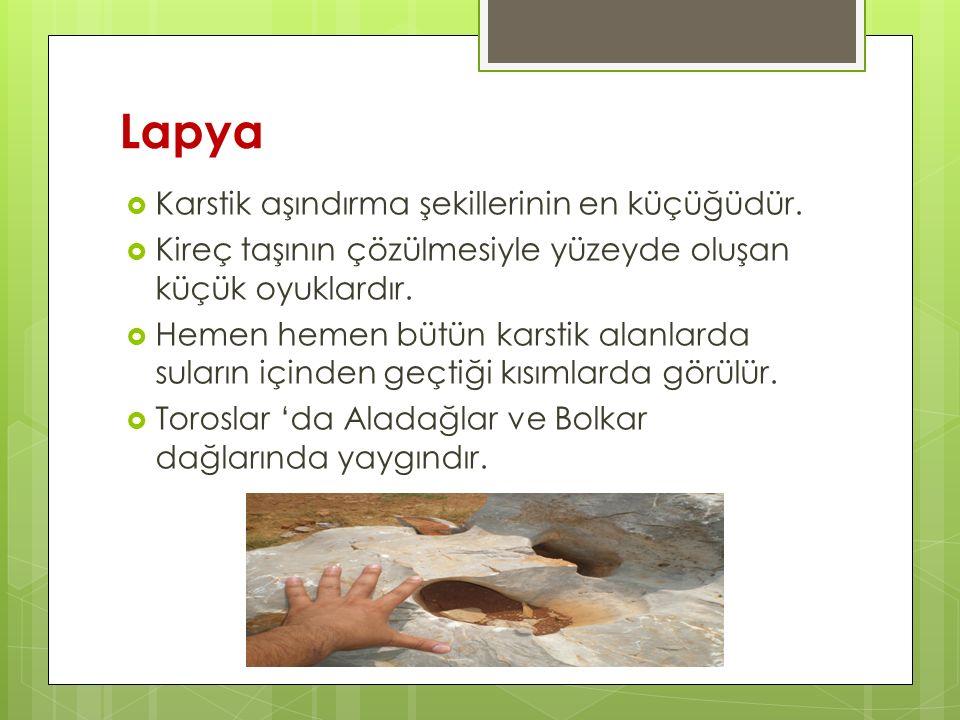 Lapya  Karstik aşındırma şekillerinin en küçüğüdür.  Kireç taşının çözülmesiyle yüzeyde oluşan küçük oyuklardır.  Hemen hemen bütün karstik alanlar