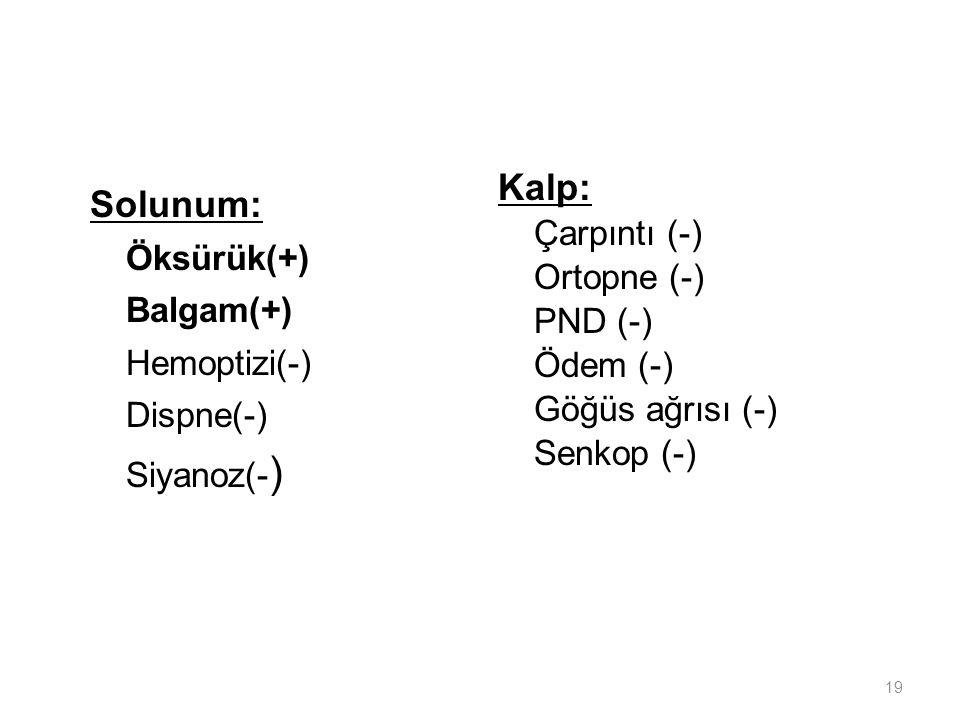 19 Solunum: Öksürük(+) Balgam(+) Hemoptizi(-) Dispne(-) Siyanoz(- ) Kalp: Çarpıntı (-) Ortopne (-) PND (-) Ödem (-) Göğüs ağrısı (-) Senkop (-)