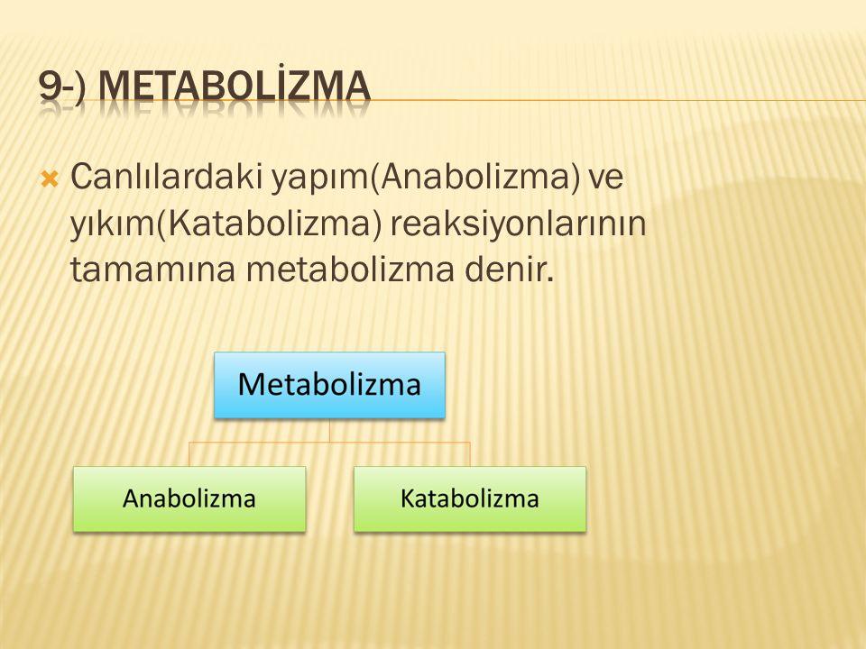  Canlılardaki yapım(Anabolizma) ve yıkım(Katabolizma) reaksiyonlarının tamamına metabolizma denir.