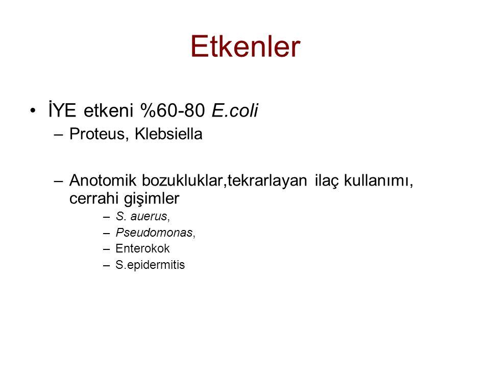 Etkenler İYE etkeni %60-80 E.coli –Proteus, Klebsiella –Anotomik bozukluklar,tekrarlayan ilaç kullanımı, cerrahi gişimler –S.