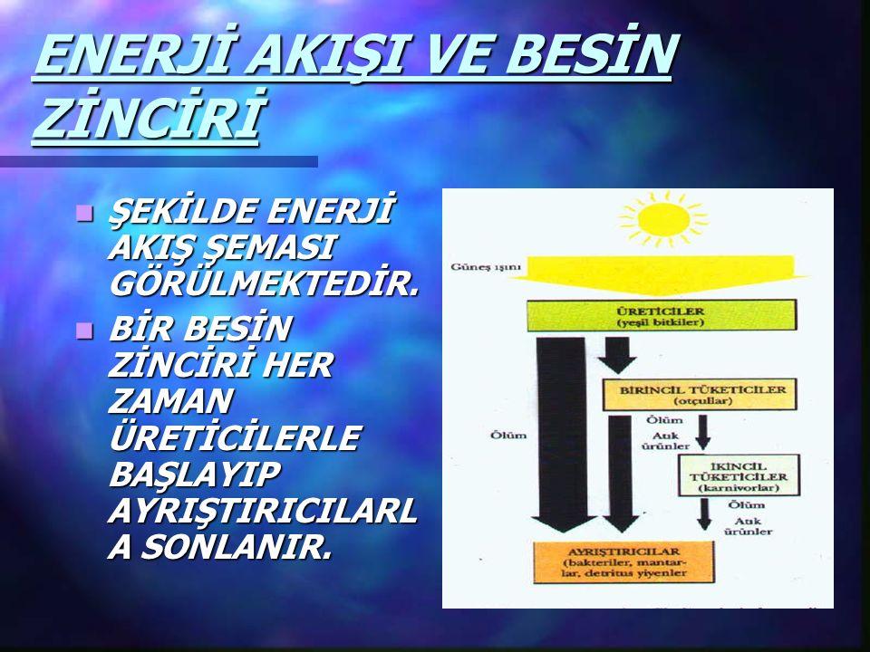 ENERJİ AKIŞI VE BESİN ZİNCİRİ ŞEKİLDE ENERJİ AKIŞ ŞEMASI GÖRÜLMEKTEDİR. ŞEKİLDE ENERJİ AKIŞ ŞEMASI GÖRÜLMEKTEDİR. BİR BESİN ZİNCİRİ HER ZAMAN ÜRETİCİL
