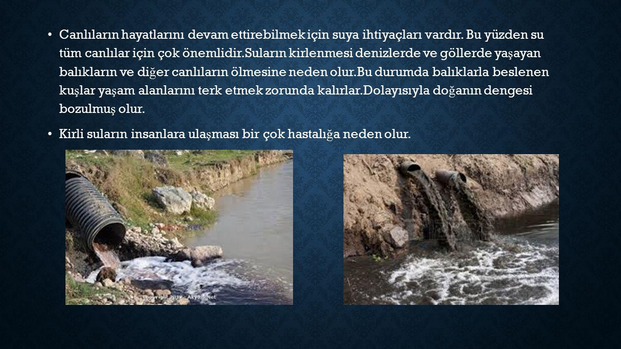 Canlıların hayatlarını devam ettirebilmek için suya ihtiyaçları vardır.