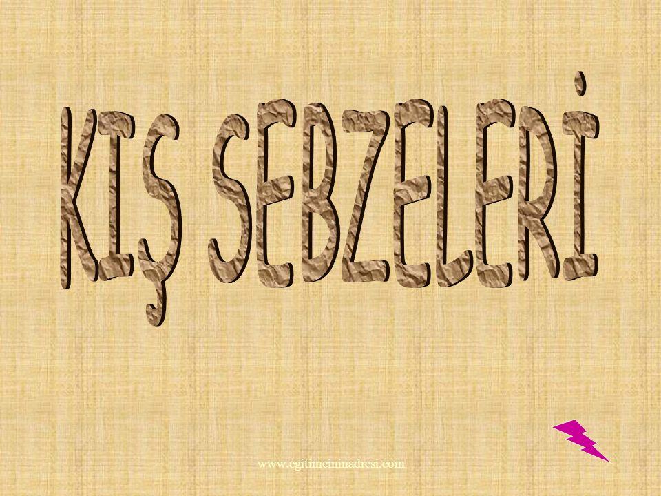SEBZELER VE MEYVELER KIŞ SEBZELERİ YAZ SEBZELERİ KIŞ MEYVELERİ YAZ MEYVELERİ www.egitimcininadresi.com