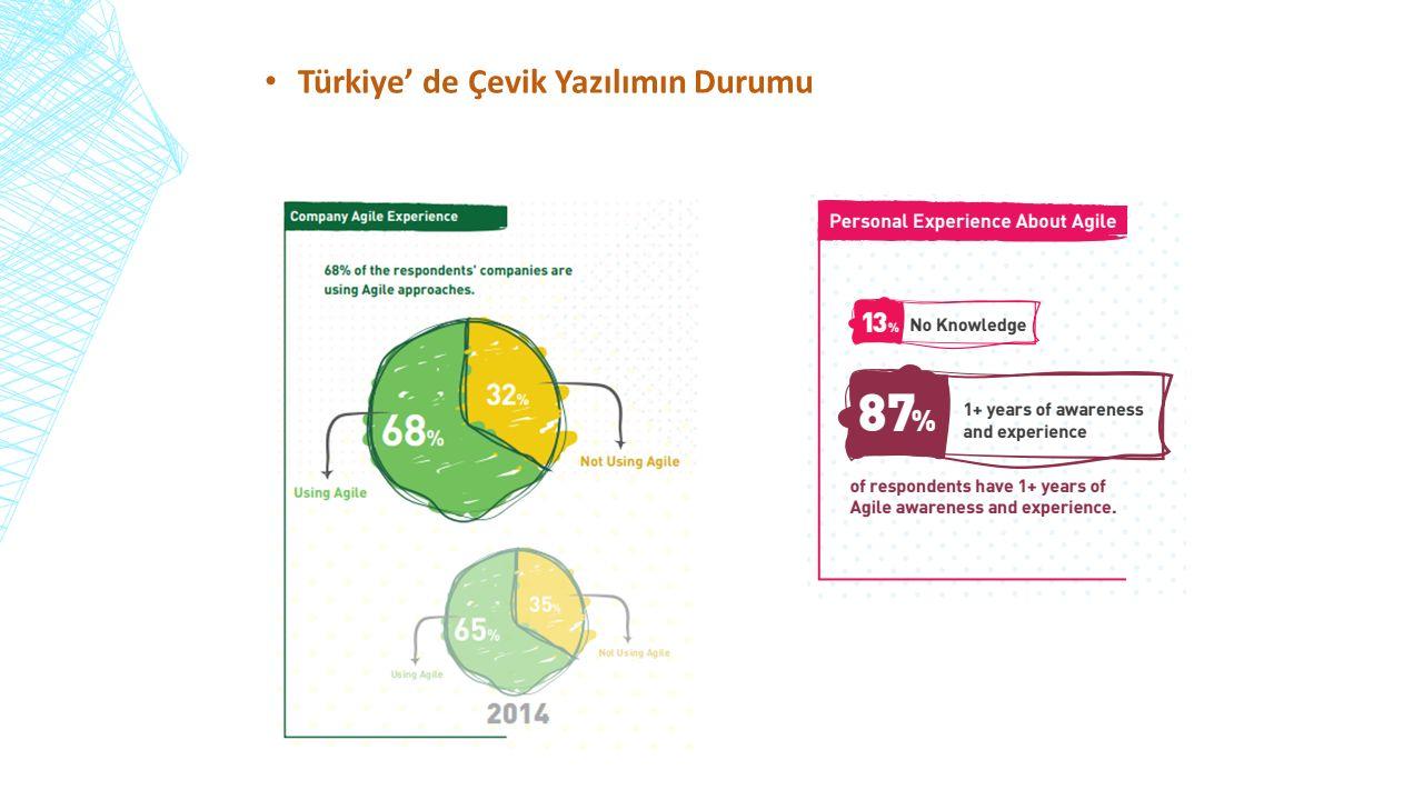 Türkiye' de Çevik Yazılımın Durumu