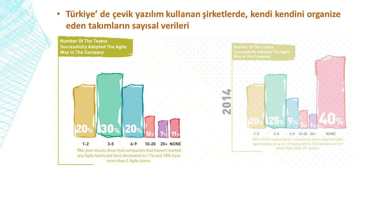 Türkiye' de çevik yazılım kullanan şirketlerde, kendi kendini organize eden takımların sayısal verileri