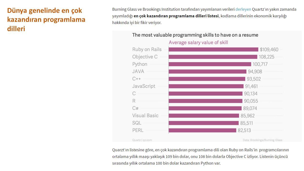 Dünya genelinde en çok kazandıran programlama dilleri