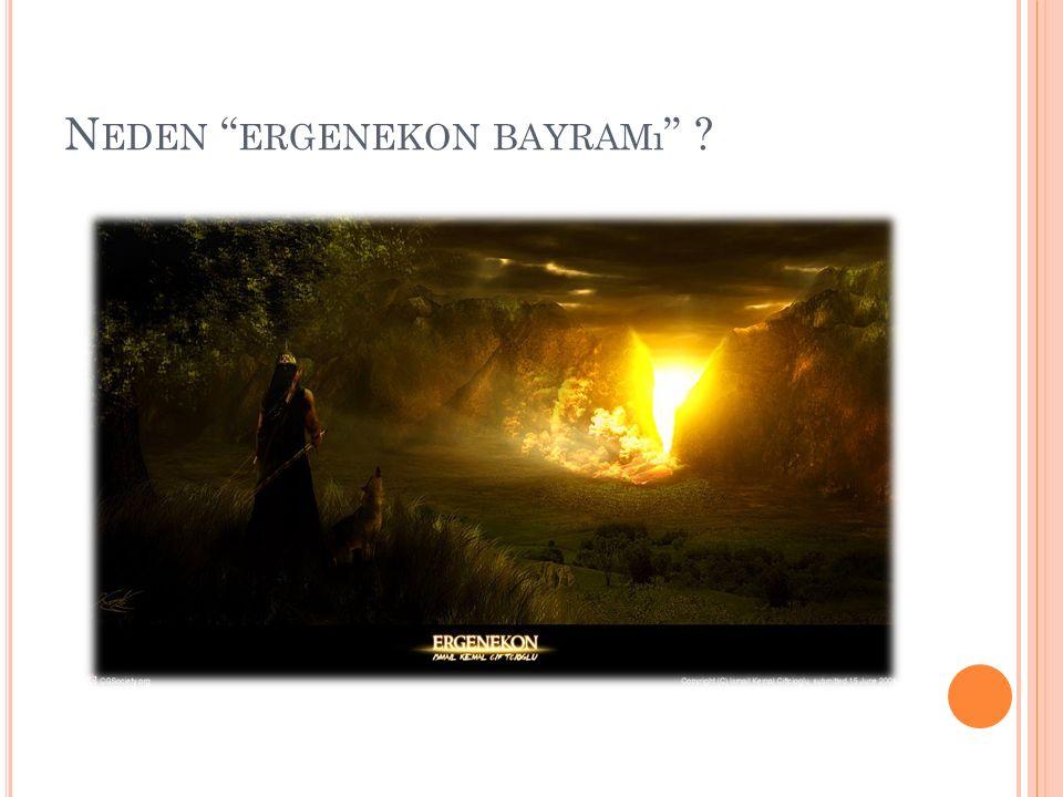 """N EDEN """" ERGENEKON BAYRAMı """" ?"""