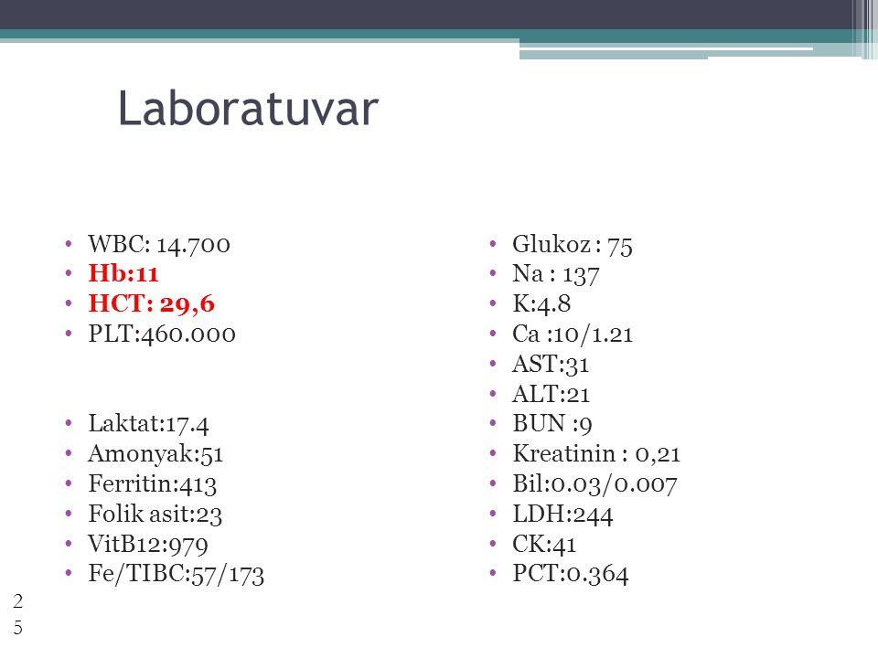 Laboratuvar WBC: 14.700 Hb:11 HCT: 29,6 PLT:460.000 Laktat:17.4 Amonyak:51 Ferritin:413 Folik asit:23 VitB12:979 Fe/TIBC:57/173 Glukoz : 75 Na : 137 K