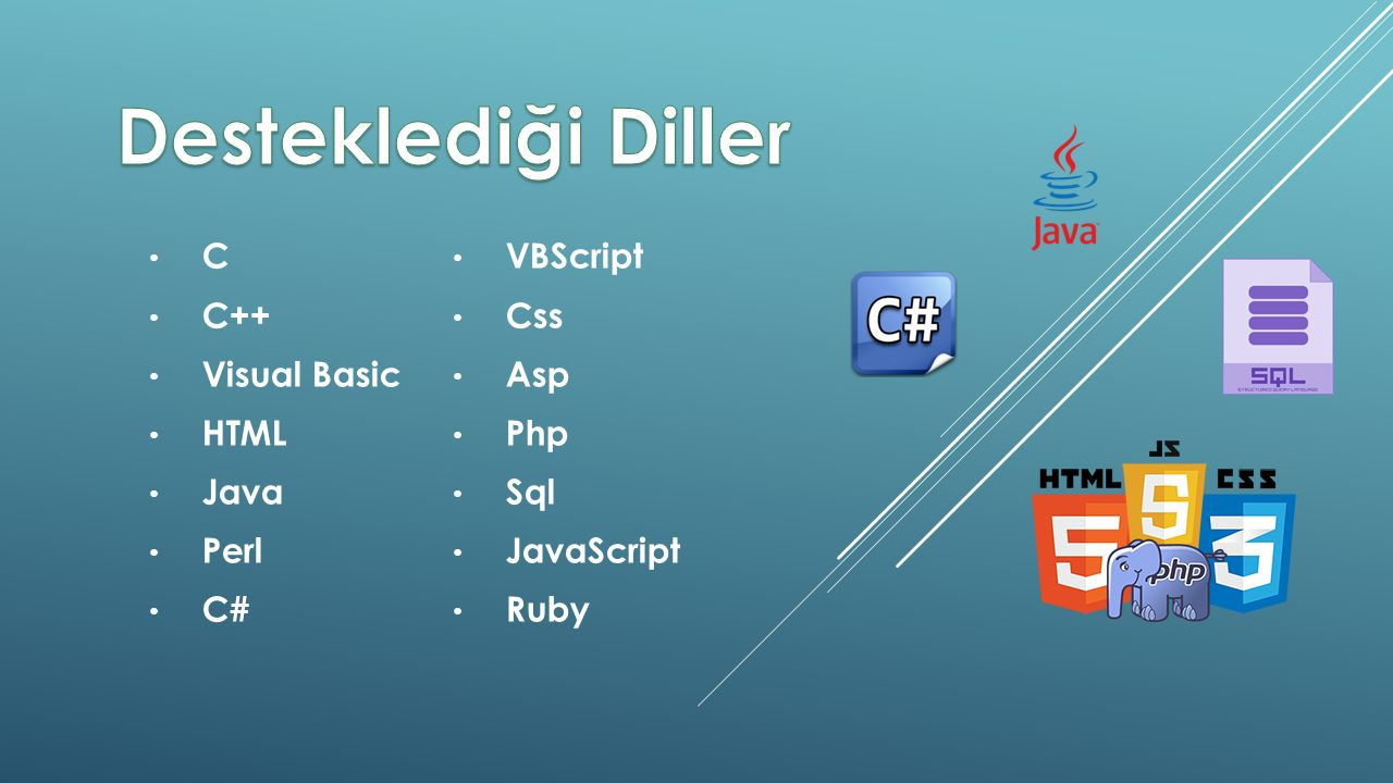 C C++ Visual Basic HTML Java Perl C# VBScript Css Asp Php Sql JavaScript Ruby