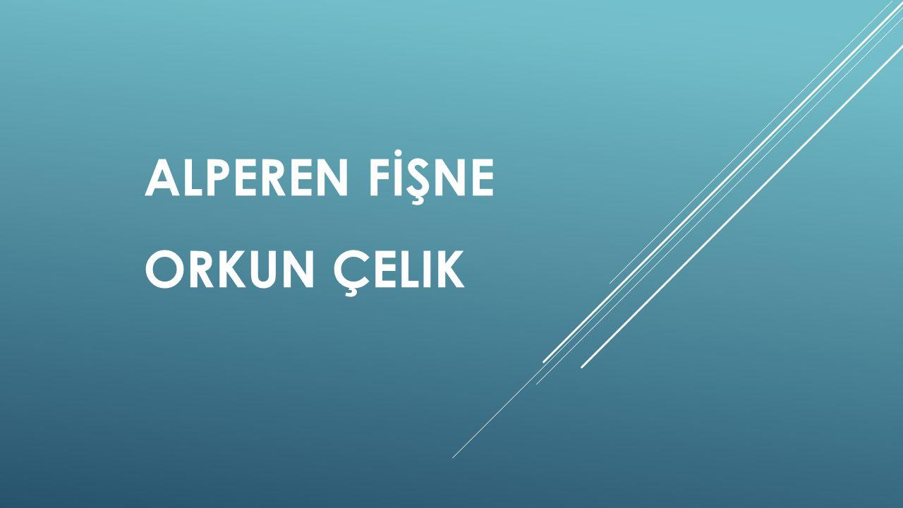 ALPEREN FİŞNE ORKUN ÇELIK