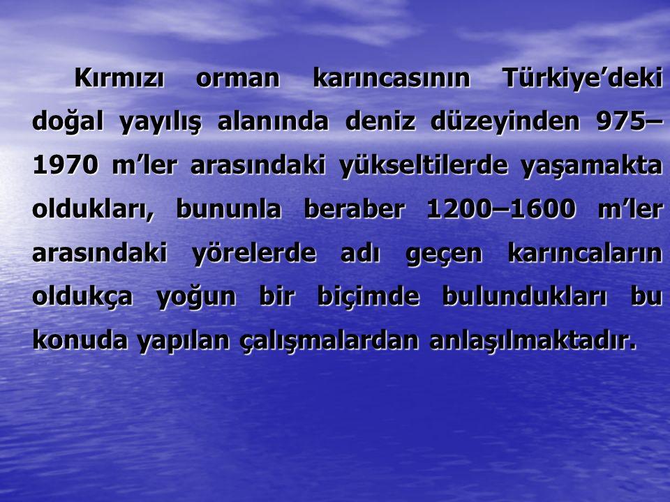 Kırmızı orman karıncasının Türkiye'deki doğal yayılış alanında deniz düzeyinden 975– 1970 m'ler arasındaki yükseltilerde yaşamakta oldukları, bununla
