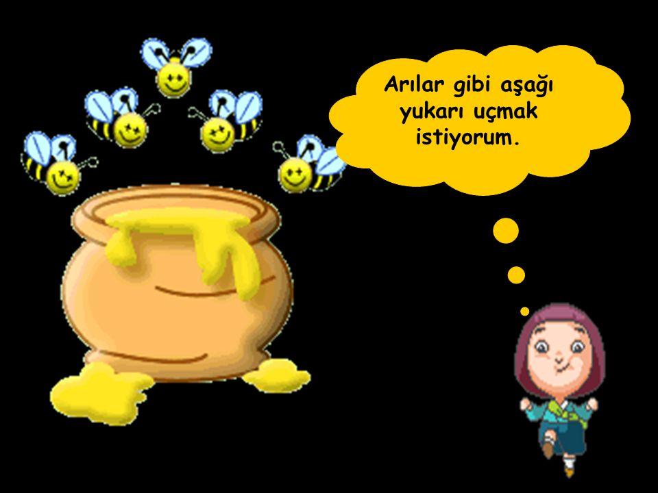 Arılar gibi aşağı yukarı uçmak istiyorum.