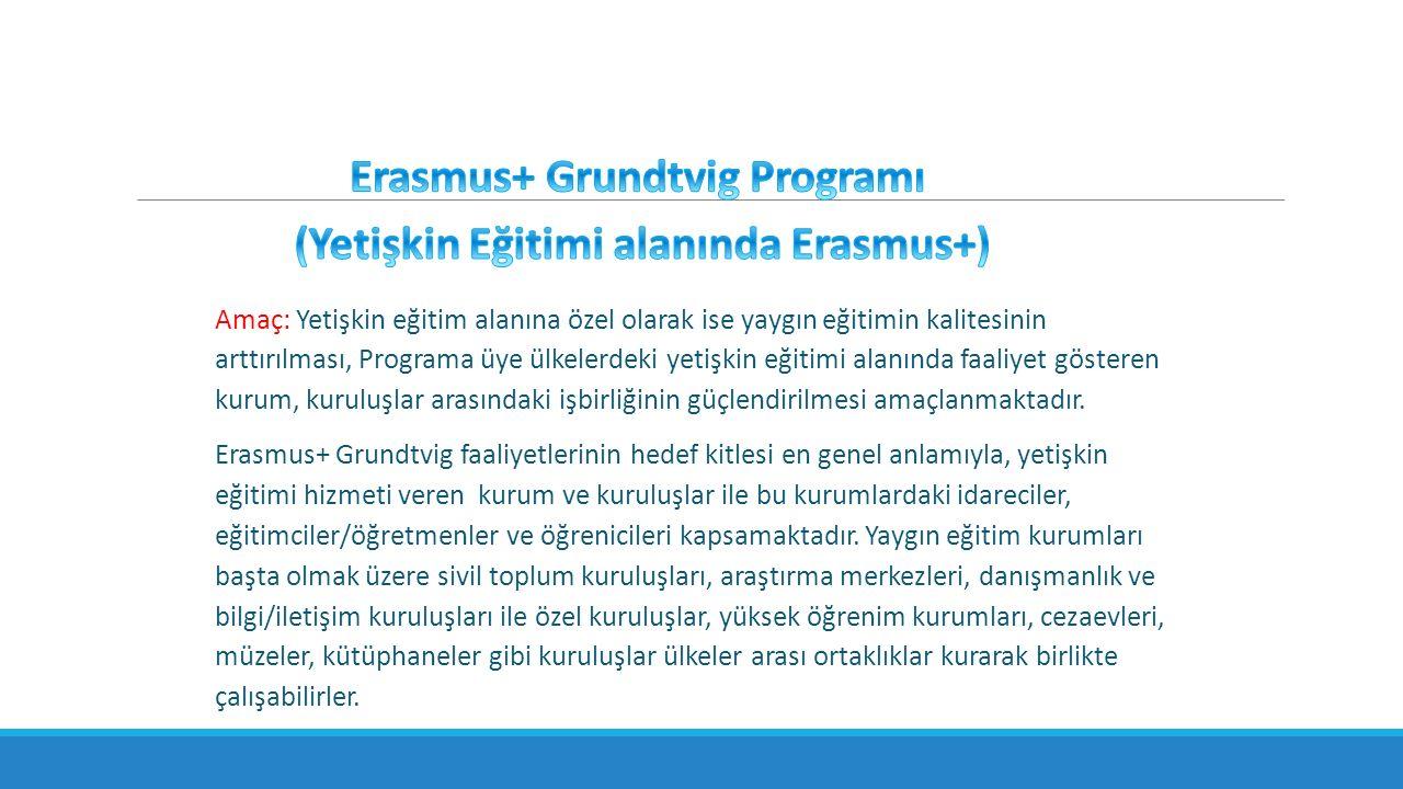 Amaç: Yetişkin eğitim alanına özel olarak ise yaygın eğitimin kalitesinin arttırılması, Programa üye ülkelerdeki yetişkin eğitimi alanında faaliyet gösteren kurum, kuruluşlar arasındaki işbirliğinin güçlendirilmesi amaçlanmaktadır.