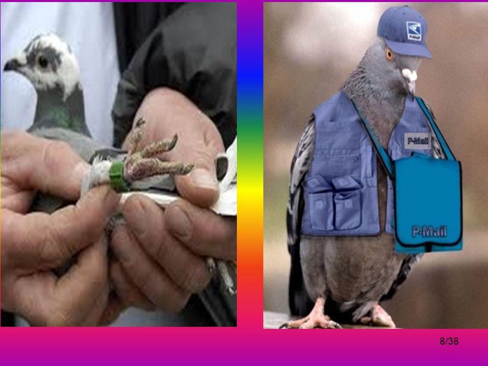 7/38 Haberleşebilmek için güvercinlerden de yararlanılmıştır.