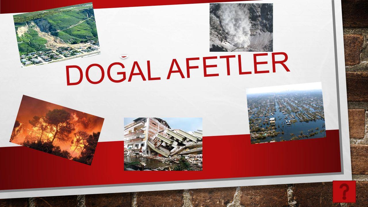 DOGAL AFETLER