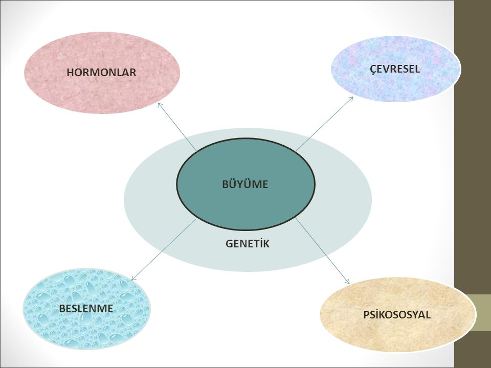 HORMONLAR ÇEVRESEL BESLENME PSİKOSOSYAL GGG GENETİK BÜYÜME