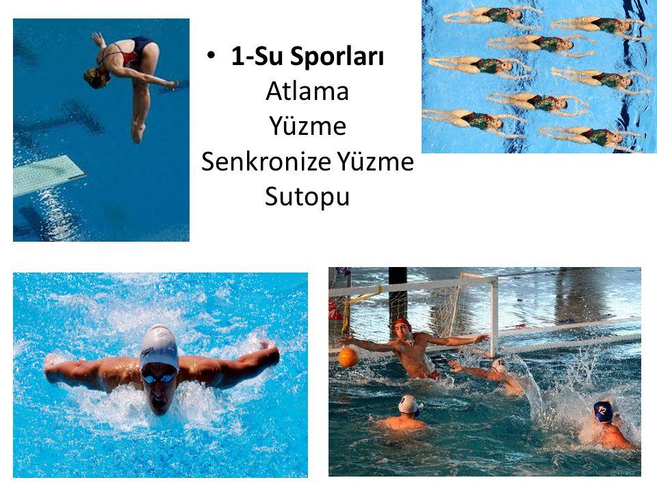 1-Su Sporları Atlama Yüzme Senkronize Yüzme Sutopu