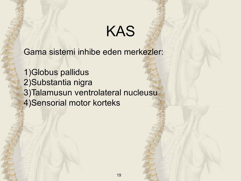 19 Gama sistemi inhibe eden merkezler: 1)Globus pallidus 2)Substantia nigra 3)Talamusun ventrolateral nucleusu 4)Sensorial motor korteks KAS