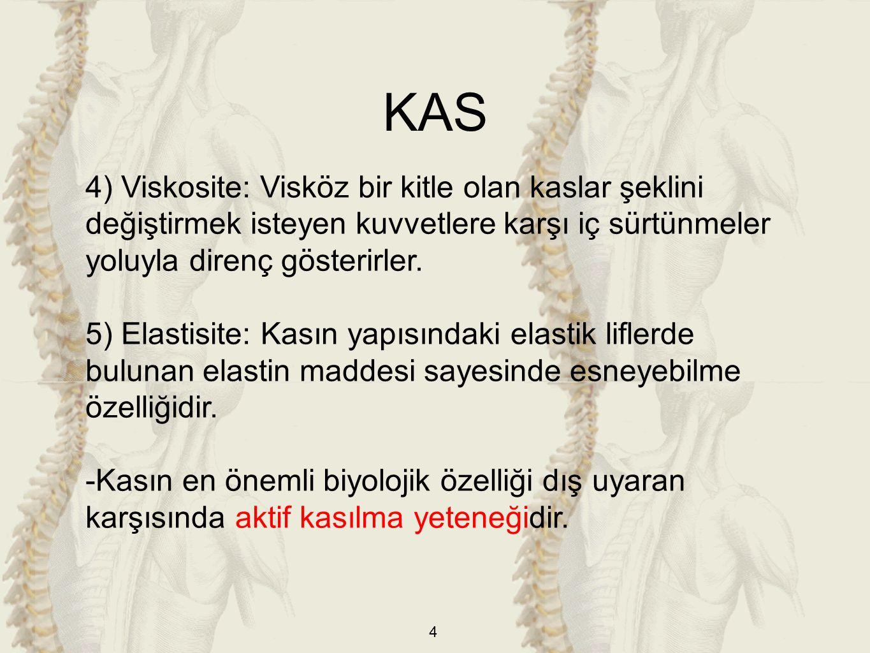 4 4) Viskosite: Visköz bir kitle olan kaslar şeklini değiştirmek isteyen kuvvetlere karşı iç sürtünmeler yoluyla direnç gösterirler.