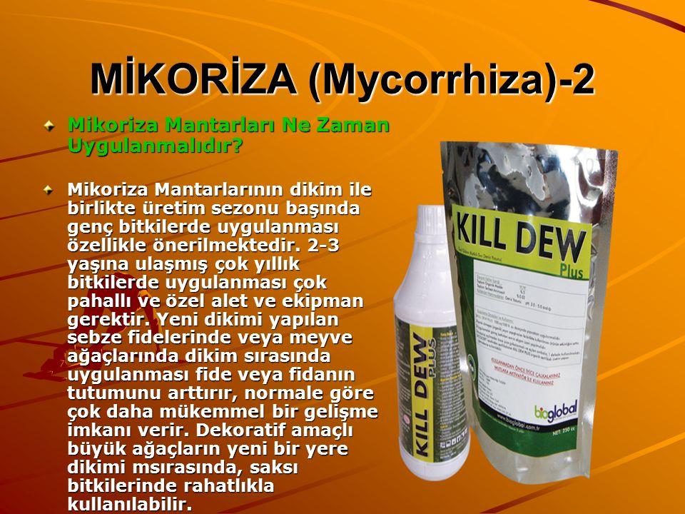 MİKORİZA (Mycorrhiza)-2 Mikoriza Mantarları Ne Zaman Uygulanmalıdır? Mikoriza Mantarlarının dikim ile birlikte üretim sezonu başında genç bitkilerde u