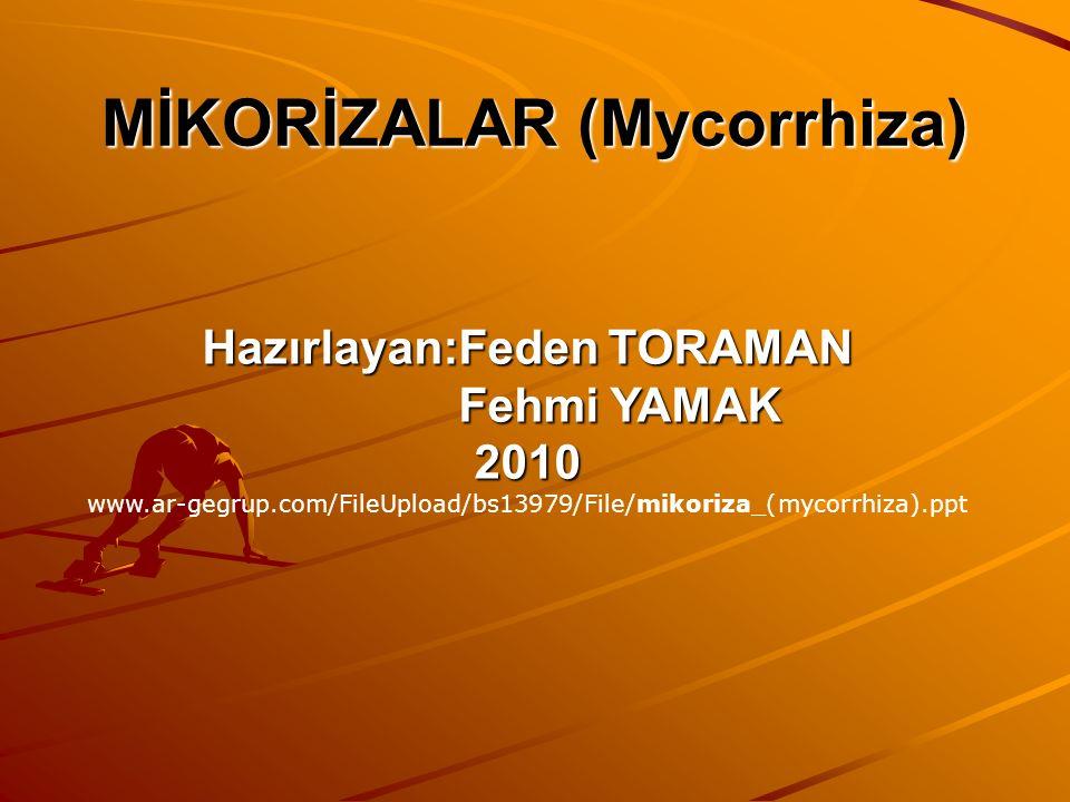 Hazırlayan:Feden TORAMAN Fehmi YAMAK 2010 www.ar-gegrup.com/FileUpload/bs13979/File/mikoriza_(mycorrhiza).ppt
