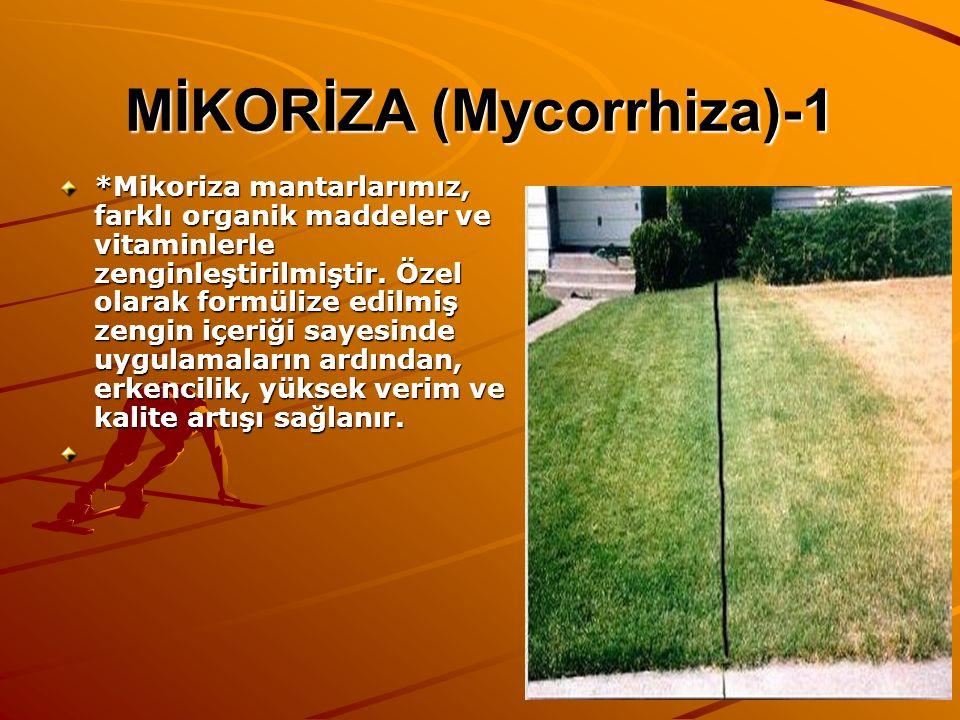 MİKORİZA (Mycorrhiza)-1 *Mikoriza mantarlarımız, farklı organik maddeler ve vitaminlerle zenginleştirilmiştir. Özel olarak formülize edilmiş zengin iç