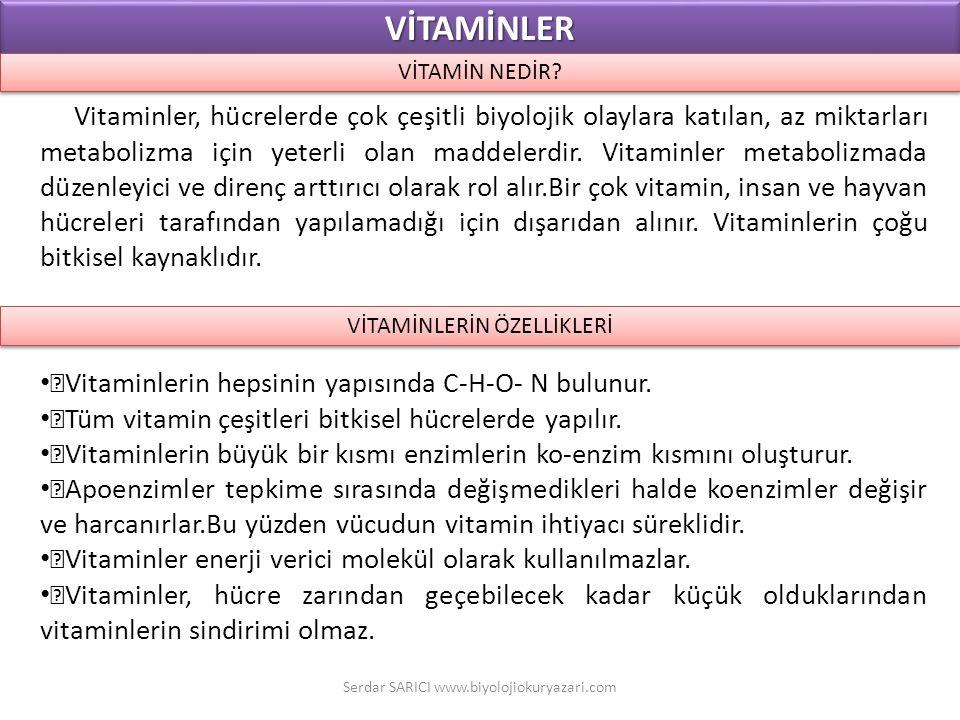 Vitaminler, hücrelerde çok çeşitli biyolojik olaylara katılan, az miktarları metabolizma için yeterli olan maddelerdir. Vitaminler metabolizmada düzen