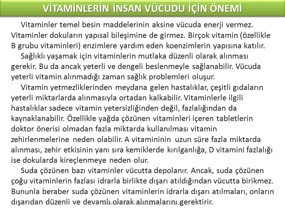 Vitaminler temel besin maddelerinin aksine vücuda enerji vermez.