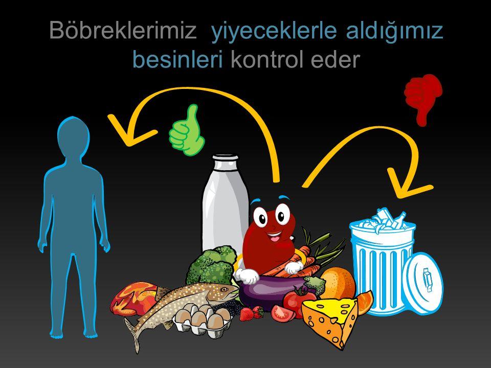 Böbreklerimiz yiyeceklerle aldığımız besinleri kontrol eder