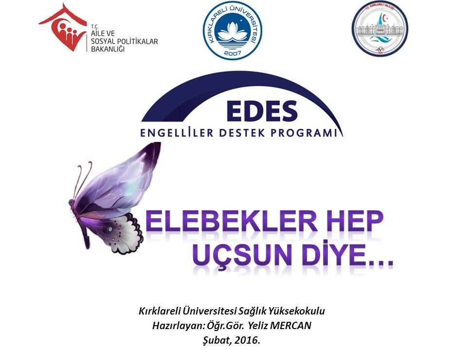 Kırklareli Üniversitesi Sağlık Yüksekokulu Hazırlayan: Öğr.Gör. Yeliz MERCAN Şubat, 2016.