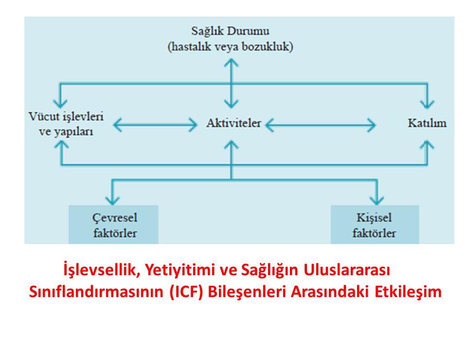 İşlevsellik, Yetiyitimi ve Sağlığın Uluslararası Sınıflandırmasının (ICF) Bileşenleri Arasındaki Etkileşim