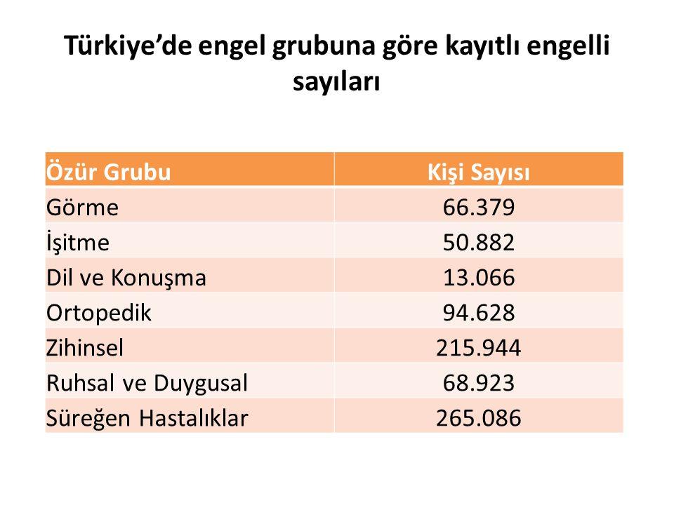 Türkiye'de engel grubuna göre kayıtlı engelli sayıları Özür GrubuKişi Sayısı Görme66.379 İşitme50.882 Dil ve Konuşma13.066 Ortopedik94.628 Zihinsel215
