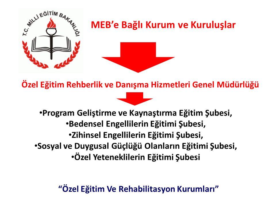 MEB'e Bağlı Kurum ve Kuruluşlar Program Geliştirme ve Kaynaştırma Eğitim Şubesi, Bedensel Engellilerin Eğitimi Şubesi, Zihinsel Engellilerin Eğitimi Ş