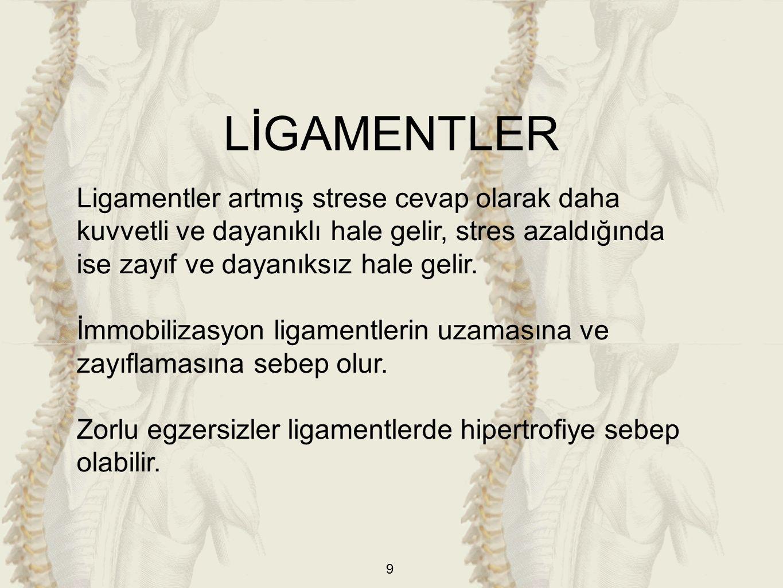9 Ligamentler artmış strese cevap olarak daha kuvvetli ve dayanıklı hale gelir, stres azaldığında ise zayıf ve dayanıksız hale gelir.