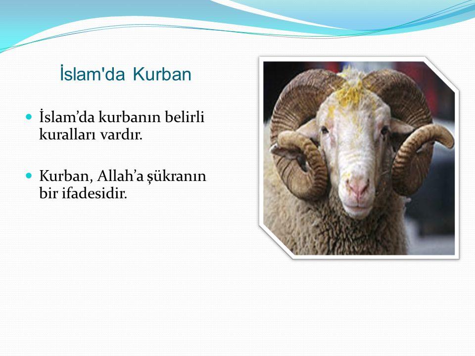 İslam da Kurban İslam'da kurbanın belirli kuralları vardır.