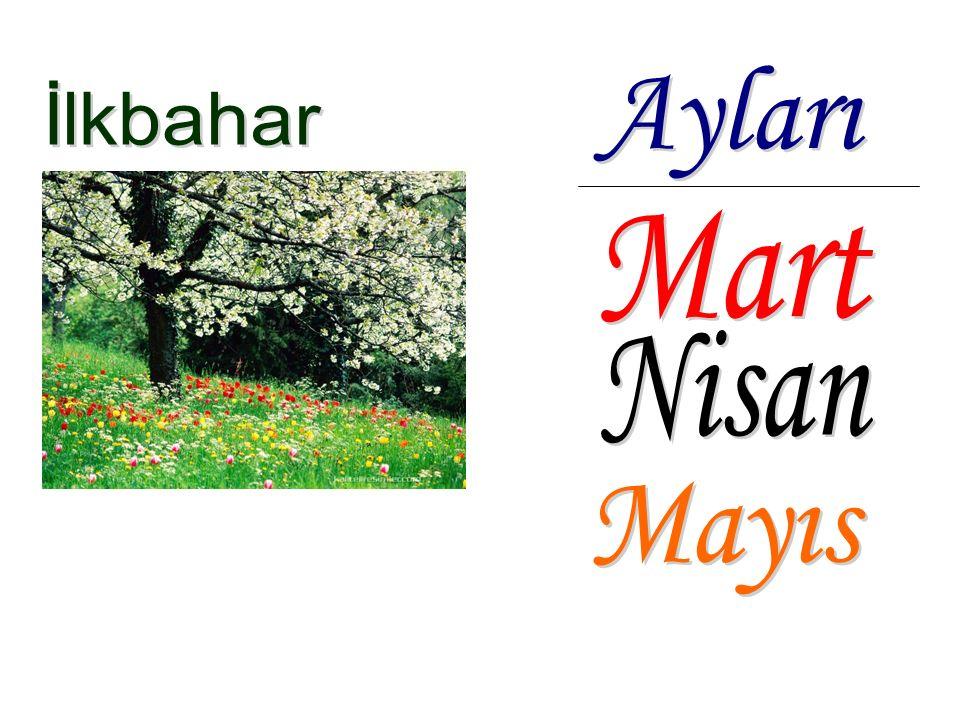 Havalar ısınmaya başlar. Etrafımızdaki her yer ve ağaçlar yeşillenir, çiçeklenir.